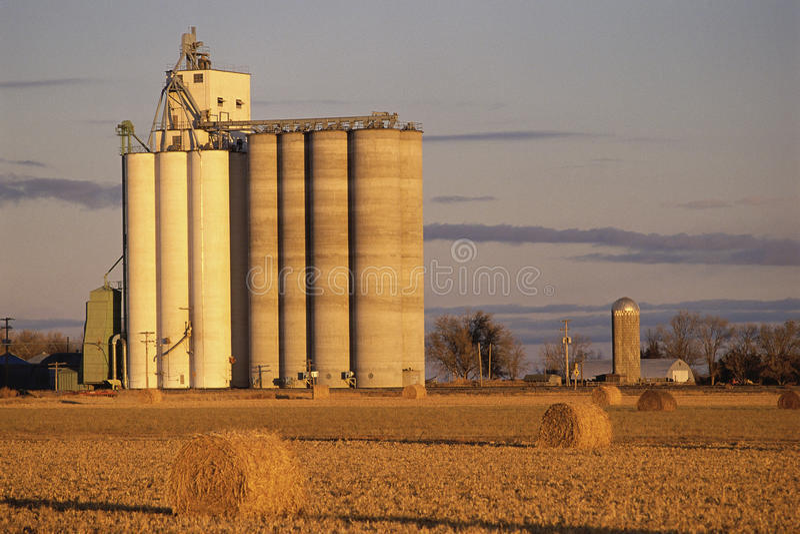 在农场的谷粮仓 免版税库存图片