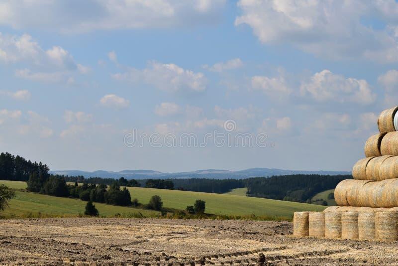 在农场的风景 圆的大包秸杆被调直对堆 图库摄影