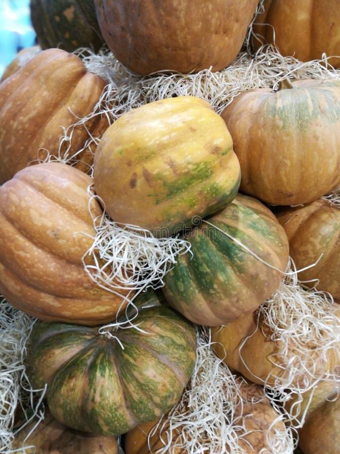 在农夫市场上的许多南瓜 库存图片