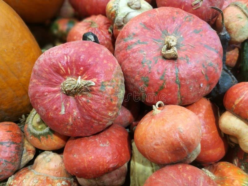 在农夫市场上的许多南瓜 库存照片
