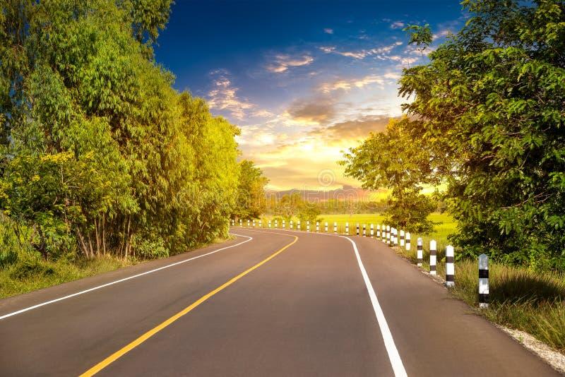 在农村场面的地方路 免版税库存图片