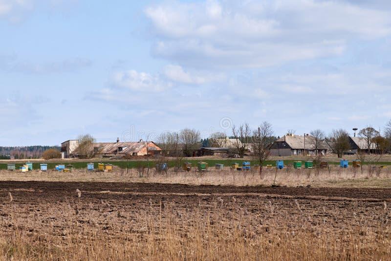 在农村的五颜六色的木蜂箱 免版税图库摄影