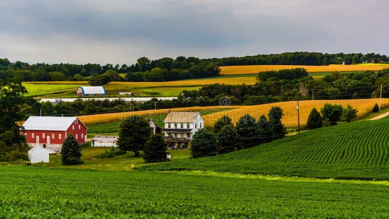 在农村约克县种田,宾夕法尼亚绵延山  库存照片