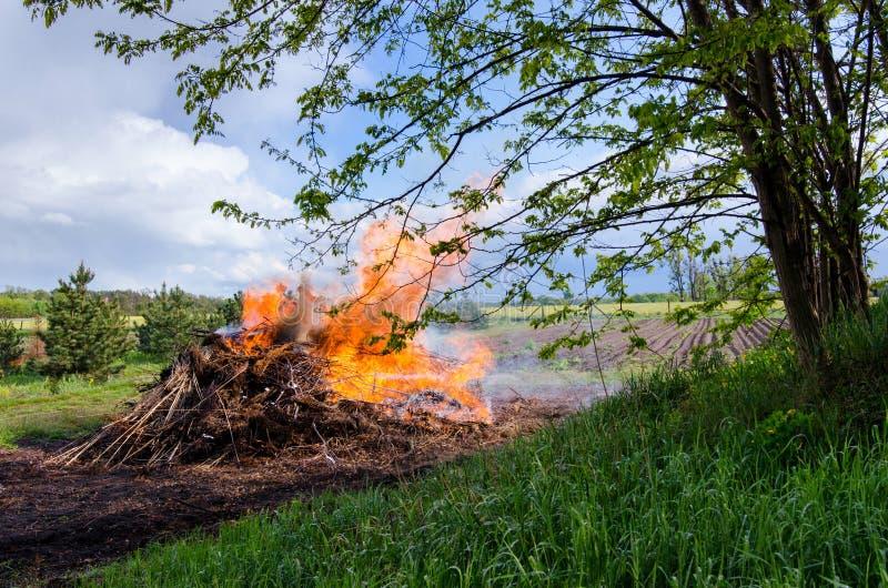 在农村自然风景的篝火 免版税库存图片