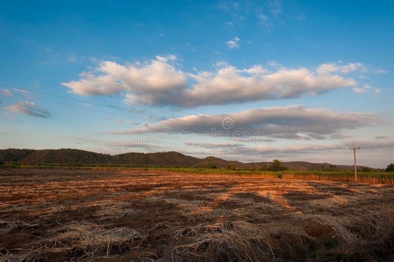 在农村草甸小山的美好的日落 免版税库存照片