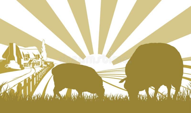 在农田场面的绵羊 皇族释放例证