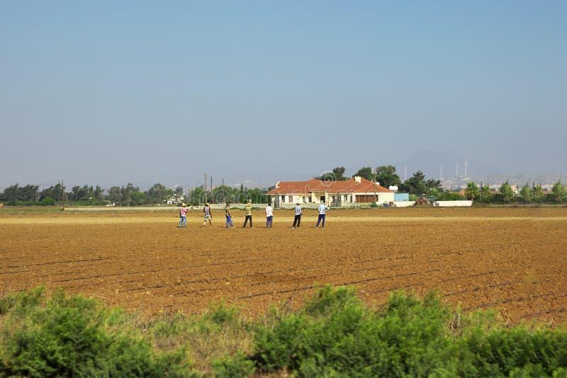 在农田的人工作在春天,播种,被投入的种子到土壤里 ??comcept 免版税库存照片