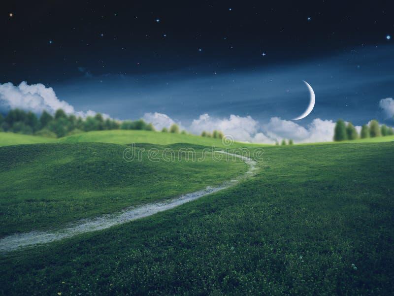 在农田的意想不到的繁星之夜 库存图片