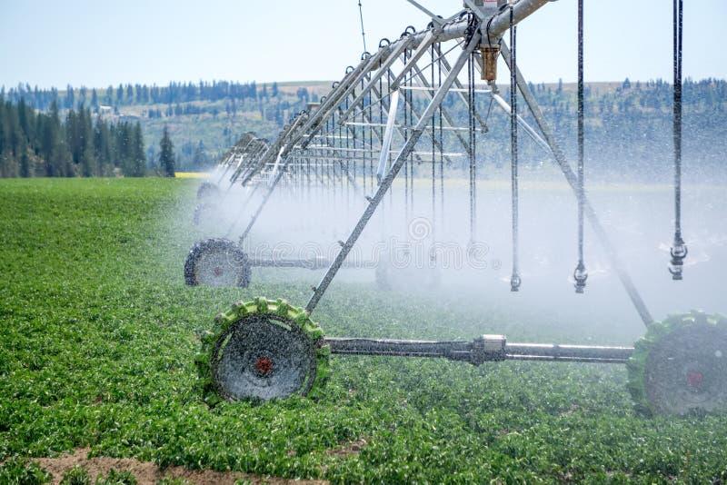 在农田的灌溉设备在好日子 免版税图库摄影