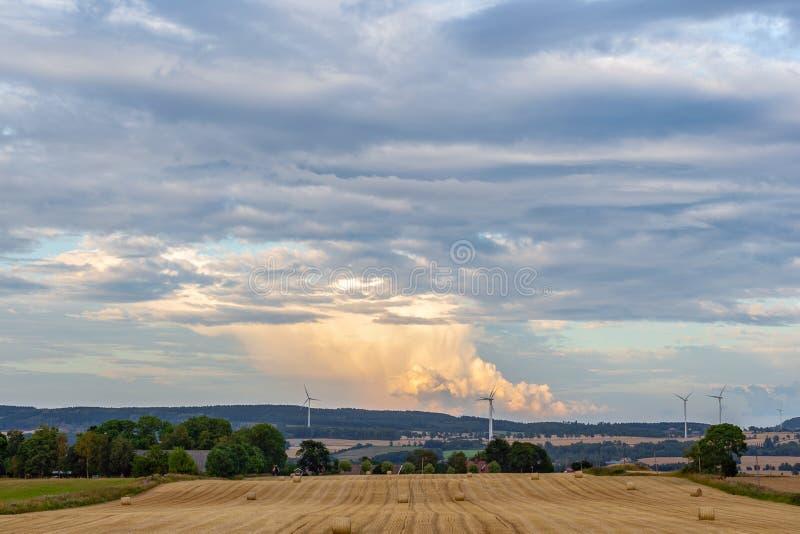 在农田的看法在瑞典 库存图片
