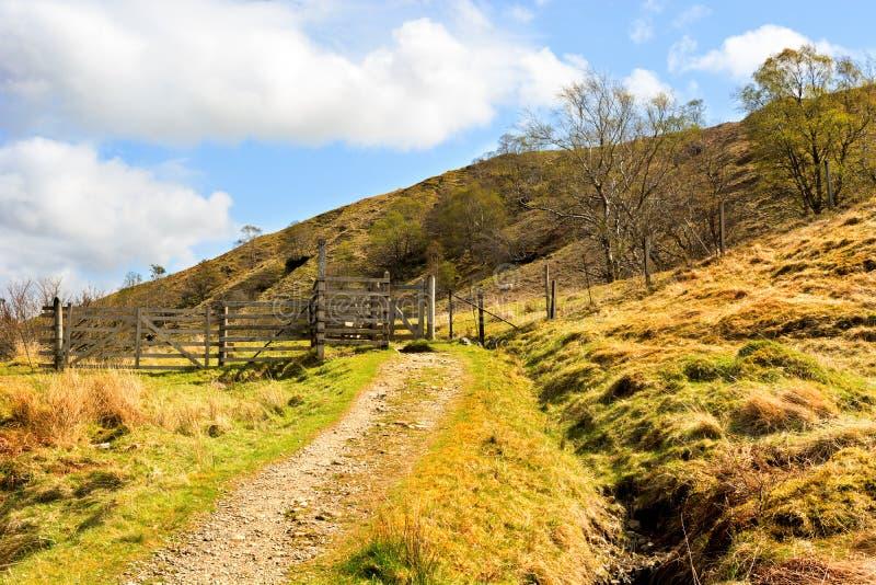 在农田里使在绵羊门和路的看法环境美化 库存照片