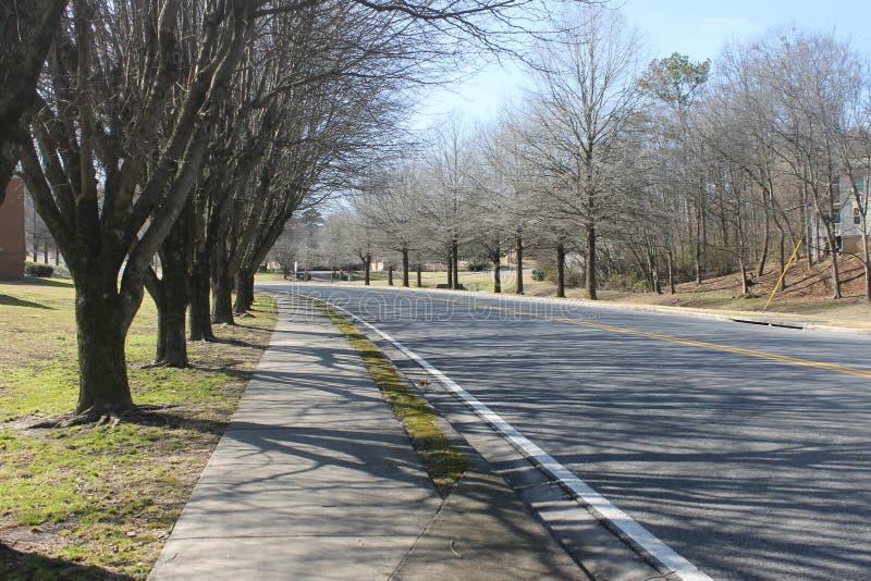 在冬天和小山的路树 库存图片