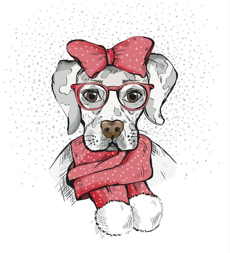 在冬天围巾的逗人喜爱的女孩狗和在它的头的红色弓 家谱狗 拉布拉多 向量例证