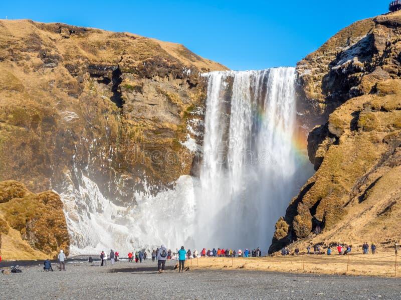 在冬天季节的Skogafoss瀑布在冰岛 免版税图库摄影