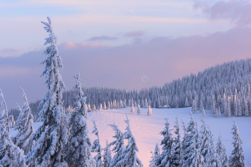 在冬天山的圣诞节风景在日落 免版税库存图片