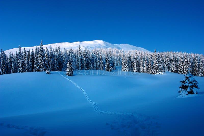 在冬天山的晴天 库存照片