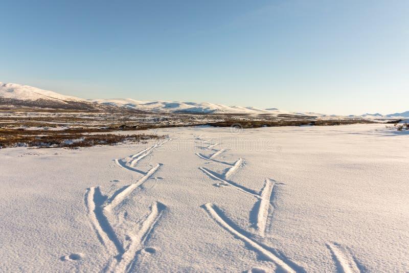 在冬天山的滑雪轨道在Dovre,挪威 库存图片