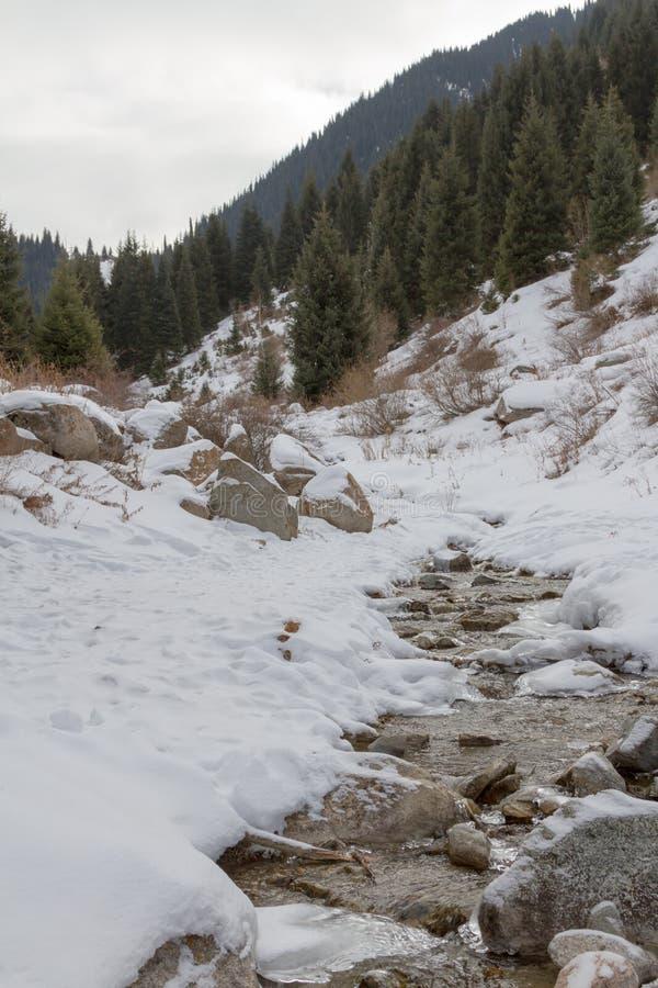 在冬天山风景的小河 免版税库存照片