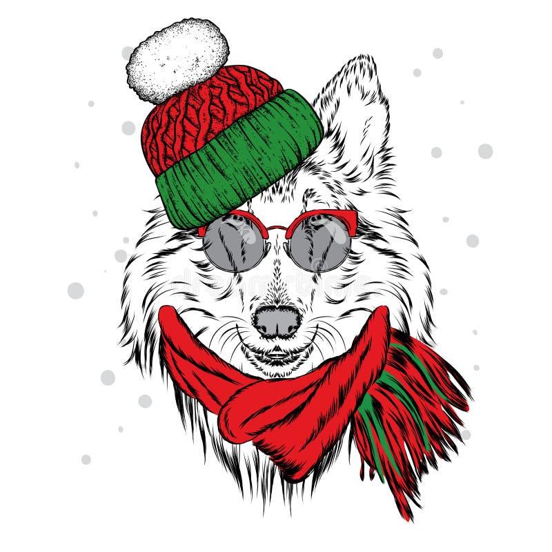 在冬天帽子和围巾的一只美丽的小狗 家谱狗 大牧羊犬 向量例证