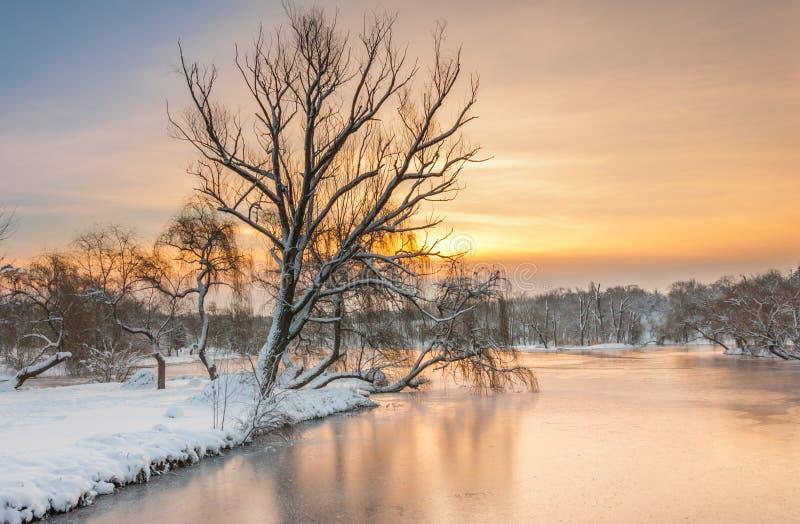 在冬天日出的五颜六色的风景在公园 免版税图库摄影