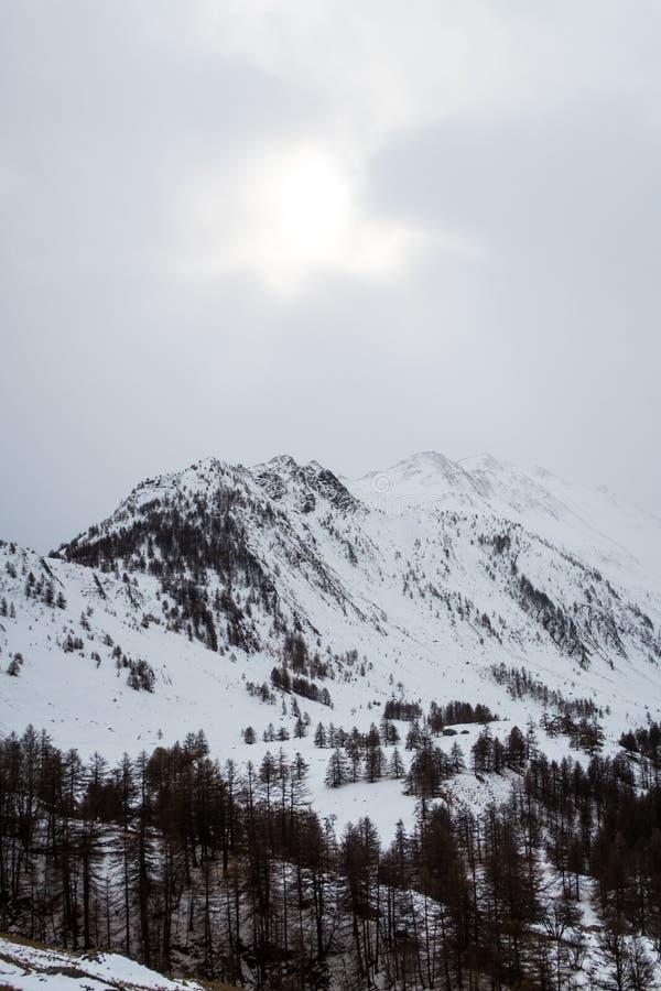 在冬天期间,斯诺伊欧洲阿尔卑斯 免版税图库摄影
