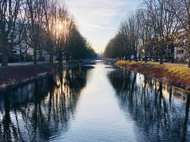 在冬天期间,有老栗树的运河和在日落的蓝天 图库摄影
