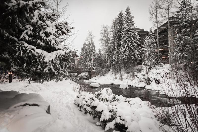在冬天期间,雪包围的河在Vail,科罗拉多 库存图片