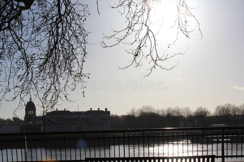 在冬天期间泰晤士河,在一棵树下 免版税库存照片