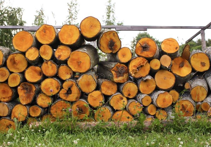 在冬天木柴准备的堆 库存图片