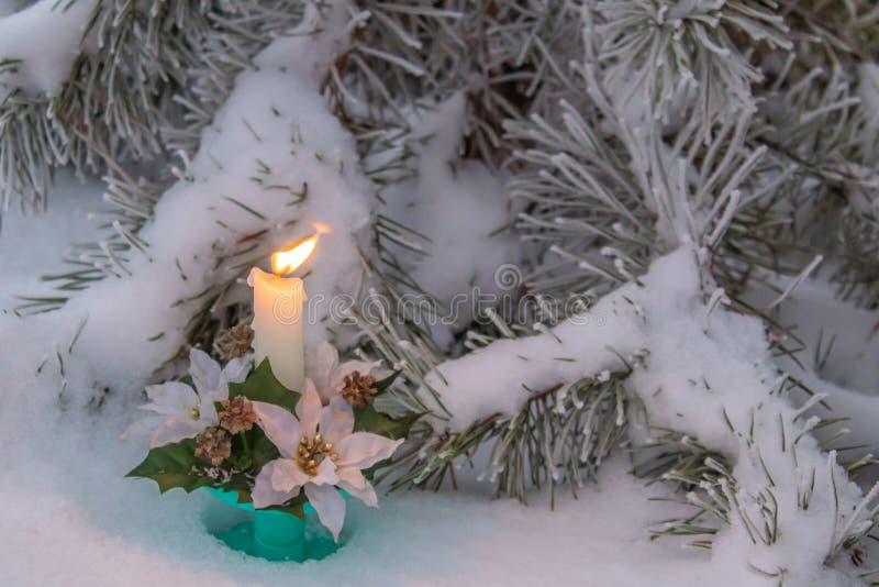 在冬天森林的森林的附近蜡烛 图库摄影