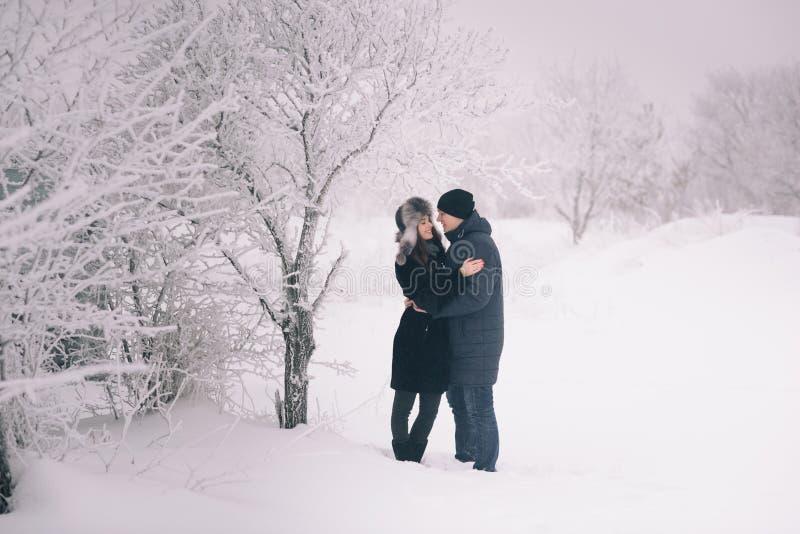 在冬天步行的一对爱恋的夫妇 雪爱情小说,冬天魔术 男人和妇女在冷淡的街道上 人和女孩是休息 库存图片