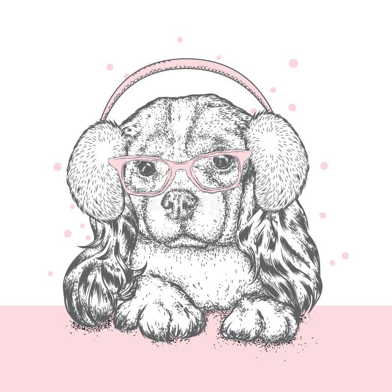 在冬天耳机和玻璃的逗人喜爱的小狗 美丽的良种狗 西班牙猎狗 新年和圣诞节,冬天 库存例证