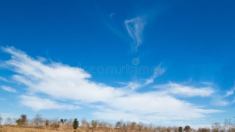 在冬天蓝天的美好的白色云彩形成 免版税库存照片