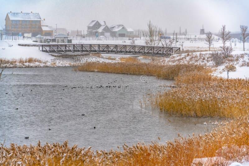 在冬天观看的破晓的湖边平地家 库存照片