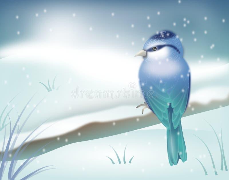 在冬天风景的蓝色鸟 向量例证