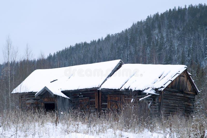 在冬天风景的被放弃的木小屋 库存照片