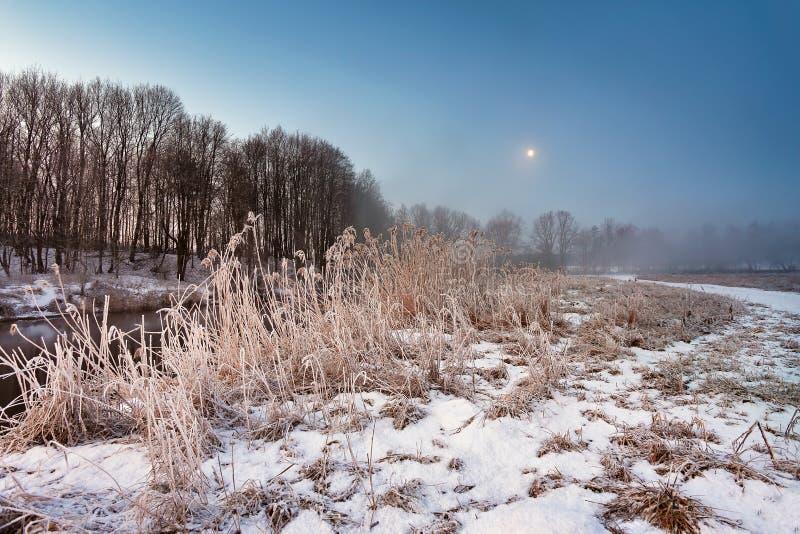 在冬天黎明的月光 雾和薄雾在多雪的冬天河 库存图片