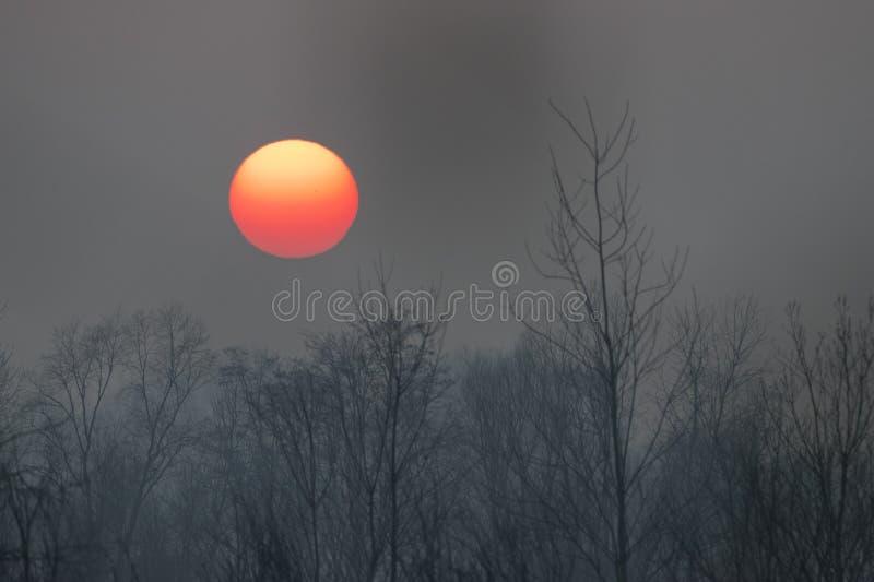 在冬时的日落 免版税库存照片