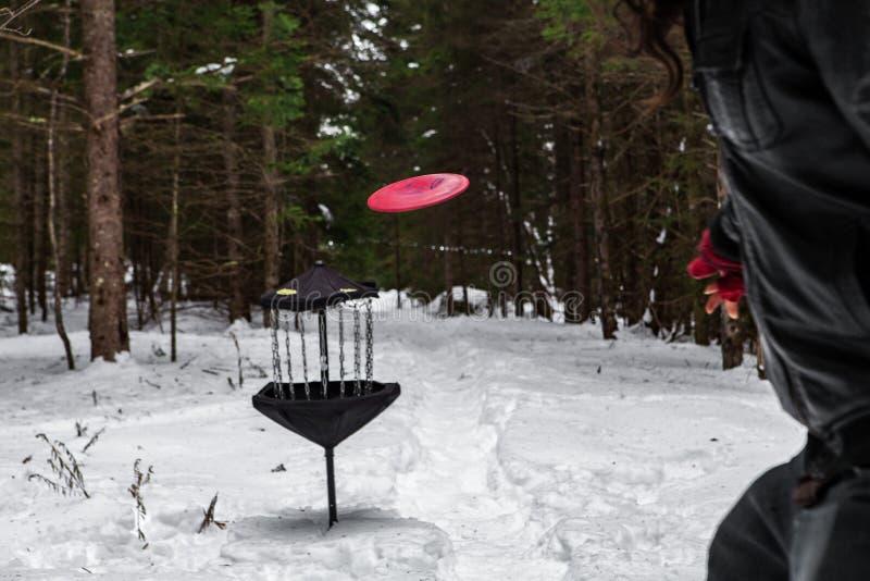 在冬时的飞碟高尔夫球 免版税库存图片