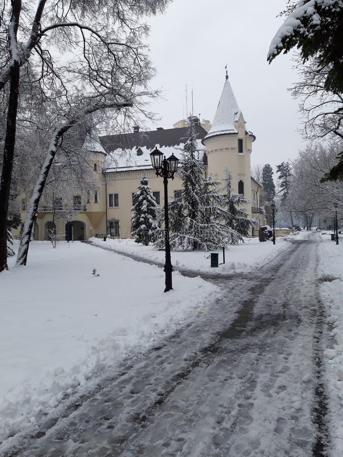 在冬时,北部罗马尼亚西部的Károly城堡 免版税图库摄影