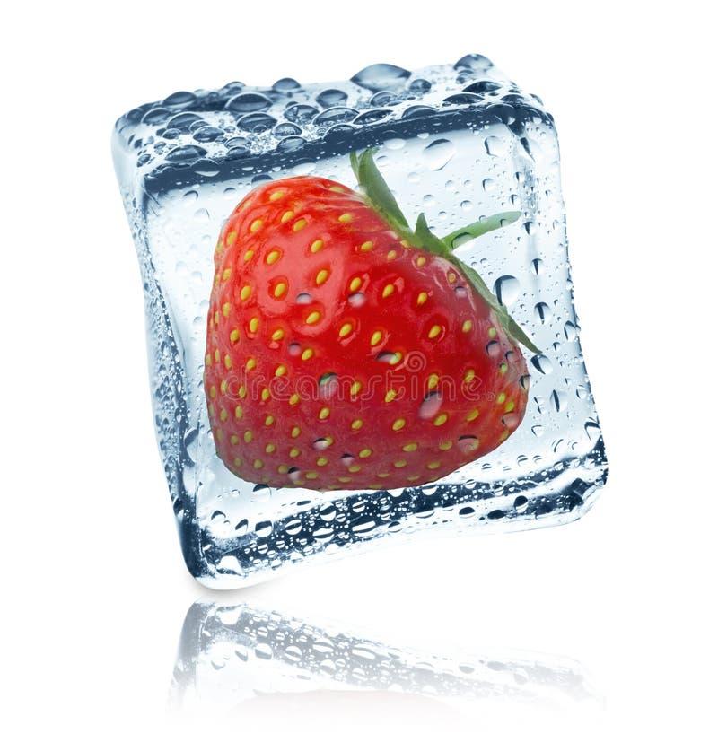在冰块结冰的草莓,被隔绝 库存图片