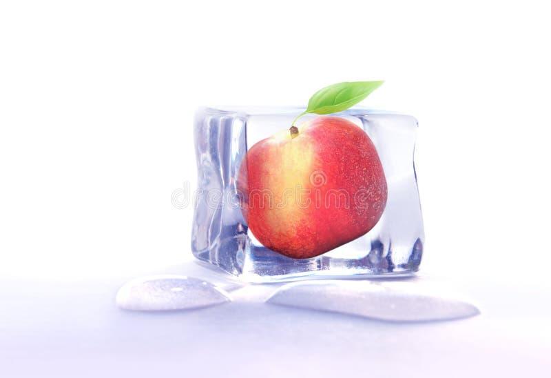 在冰块结冰的果子 免版税库存图片