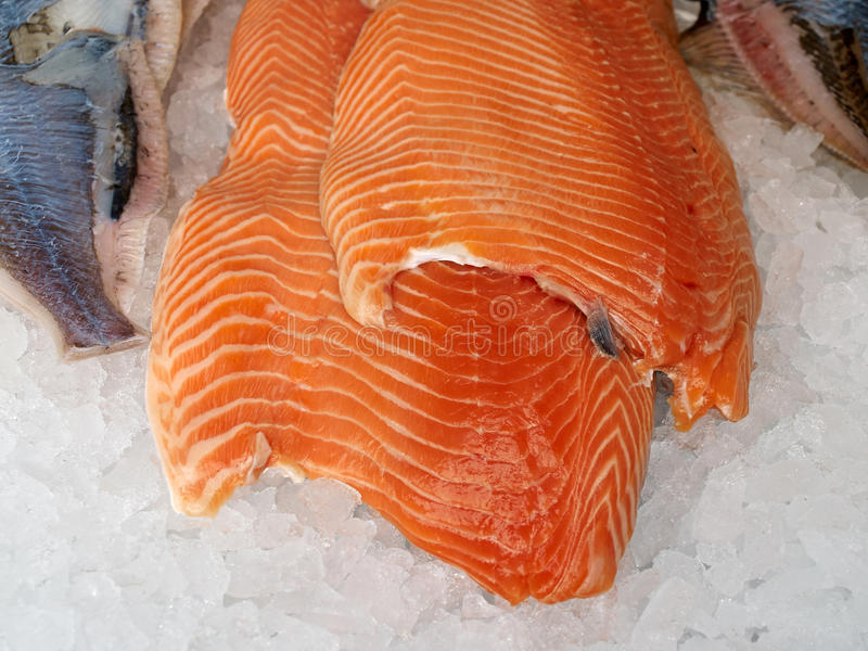 在冰层数的新鲜的三文鱼  库存照片