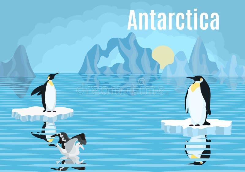 在冰山南极洲信天翁的海报企鹅 向量例证
