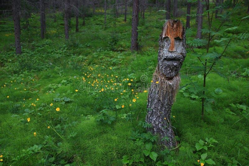 在冰岛丛林的被雕刻的树 库存图片