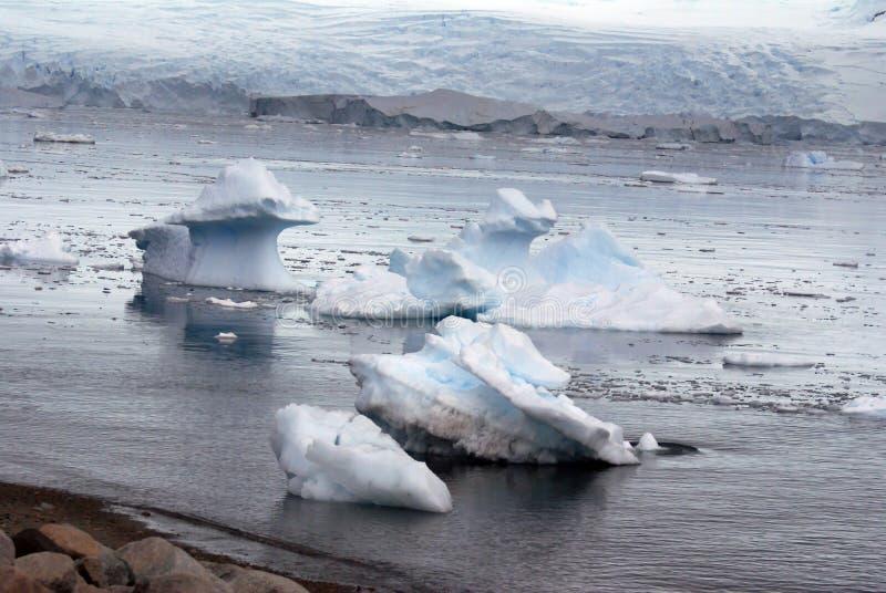 在冰川前面的冰山 免版税库存照片