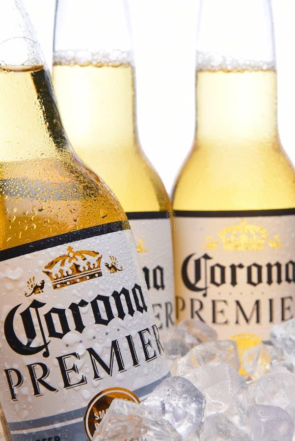 在冰的三个Corna首要的啤酒瓶 库存照片