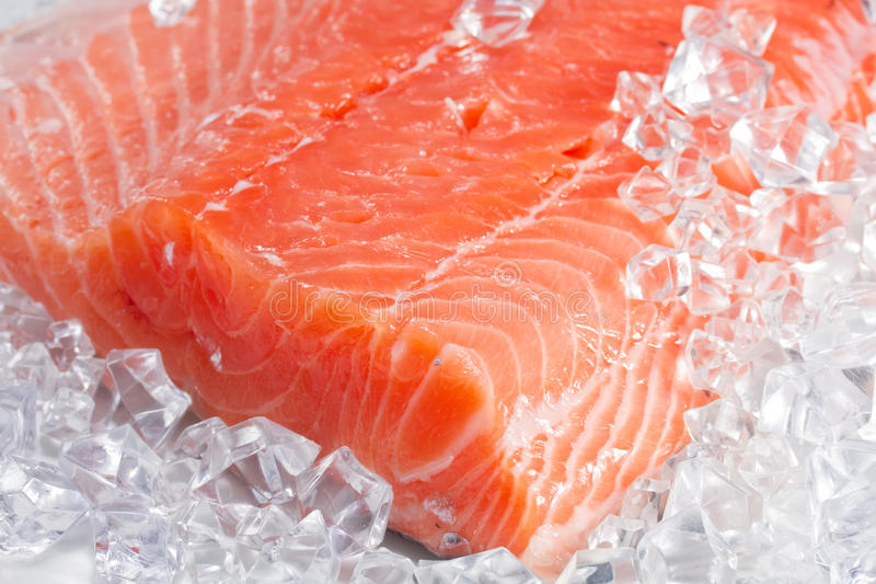 在冰的三文鱼 库存图片