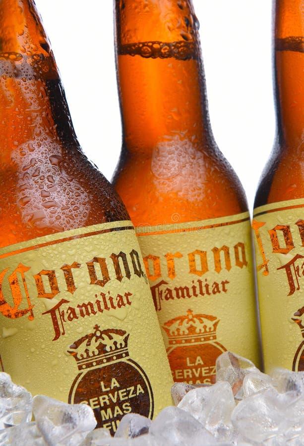 在冰的光环熟悉的啤酒瓶 库存图片