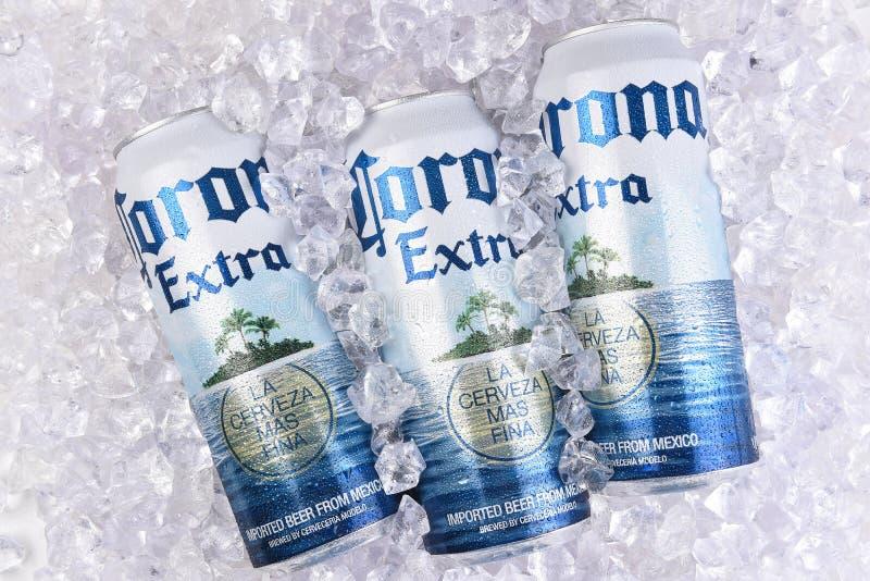 在冰的光环额外啤酒罐 库存图片
